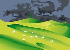 Корова есть на лугах Стоковое Фото