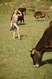 Корова, женщина в выгоне сельской местности, экологичности Стоковые Фотографии RF