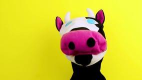Корова марионетки руки на желтой предпосылке, театре марионетки акции видеоматериалы