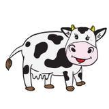 корова милая Стоковое Изображение