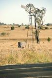 Коровы и ветрянка в сельской местности Стоковые Изображения