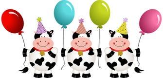 Коровы дня рождения с воздушными шарами Стоковые Фото