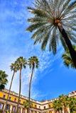Королевская область в Барселоне, Испании с пальмами стоковые фото