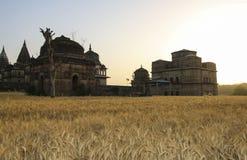 Королевские кенотафы Orchha Orchha, Madhya Pradesh, Индия стоковые фотографии rf