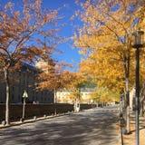 Королевский монастырь San Lorenzo de El Escorial около Мадрида стоковые фотографии rf