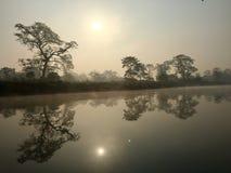 Королевский национальный парк Chitwan - Непал стоковая фотография rf