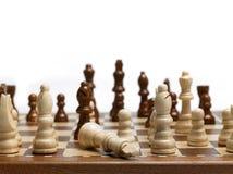 король шахмат Стоковое Фото