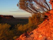 король s каньона Стоковые Изображения RF