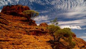 короля каньона Стоковое Изображение RF