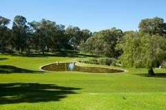 Короля Парк - Перт - Австралия Стоковое Фото