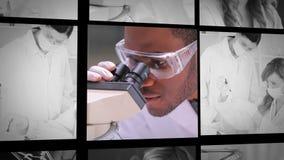 3 коротких зажима ассистентов лаборатории на работе сток-видео