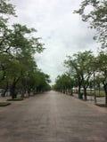 Королевская площадь Sanam Luang стоковые фото