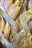 Королевская текстура расшивы ладони кокоса Стоковое Фото