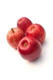 Королевские торжественные яблоки Стоковая Фотография RF