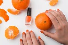 Королевство оранжевого цвета Стоковое Изображение RF