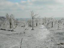 Королевство льда стоковое изображение