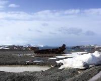 Король Джордж Остров, Антарктика Стоковые Фото
