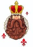 Король Портрет Стоковые Фото