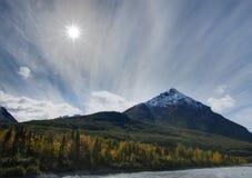 Король Mt Падать Стоковые Фото