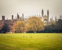 Короля Коллеж Молельня, Кембридж Стоковое Изображение RF