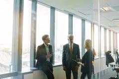 Корпоративный профессионал имея стоящую встречу Стоковая Фотография RF