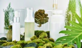 Косметика и skincare разливают контейнеры по бутылкам с зелеными травяными листьями, прикрывают пакет ярлыка для клеймя модель-ма стоковые изображения rf