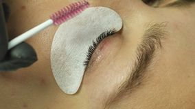Косметики для приглаживать ресницы макияжа видеоматериал