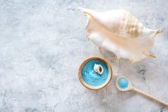 Косметики и раковина моря от мертвого моря для насмешки взгляд сверху предпосылки домодельного курорта серой каменной вверх Стоковая Фотография RF