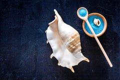 Косметики и раковина моря от мертвого моря для насмешки взгляд сверху предпосылки домодельного курорта темной вверх Стоковая Фотография RF