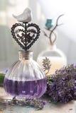 Косметики природы, handmade подготовка эфирных масел, parfum стоковое изображение