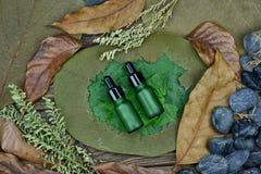 Косметики чистым естественным заводом, органическим продуктом спа красоты на зеленых лист стоковые изображения rf