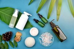 Косметические контейнеры бутылки на зеленой травяной предпосылке листьев, пустом ярлыке для клеймя модель-макета Стоковое Фото