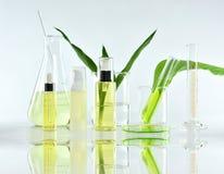 Косметические контейнеры бутылки с зелеными травяными листьями и научным стеклоизделием, пустым пакетом ярлыка для клеймя модель- стоковые фотографии rf