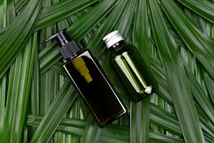 Косметические контейнеры бутылки с зелеными травяными листьями, пустым пакетом ярлыка для клеймя модель-макета Стоковое Фото