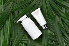 Косметические контейнеры бутылки с зелеными травяными листьями, пустым пакетом ярлыка для клеймя модель-макета Стоковые Фотографии RF