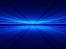 космосы Стоковая Фотография RF