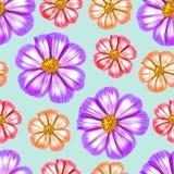 космос Безшовная текстура картины цветков предпосылка флористическая Стоковые Фото
