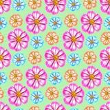 космос Безшовная текстура картины цветков предпосылка флористическая Стоковое Изображение