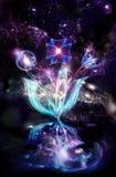 космос букета Стоковое Фото