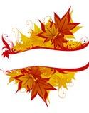 космос листьев экземпляра предпосылки Стоковые Фото