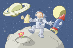 космос садовника стоковые фотографии rf