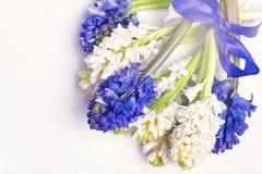 Космос экземпляра карточки праздника пасхи весны взгляд сверху предпосылки голубых и белых гиацинтов красивой предпосылки цветка  Стоковое Изображение RF
