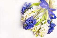 Космос экземпляра карточки праздника пасхи весны взгляд сверху предпосылки голубых и белых гиацинтов красивой предпосылки цветка  Стоковые Изображения RF
