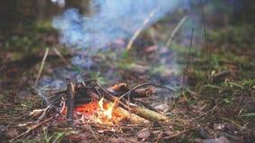 Костер в лесе Стоковые Фото