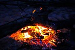 Костер в ноче лета, горящий журнал Стоковая Фотография