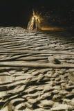 Костер на пляже Стоковое Изображение