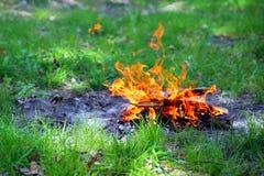 Костер на траве Стоковое Фото