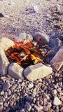 Костер пляжа Стоковые Изображения RF