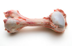 косточка говядины Стоковое Изображение RF