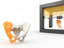 косточка напечатанная 3d тазобедренная Стоковые Изображения RF